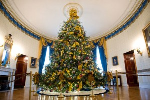 The White House Blue Room at Christmastime